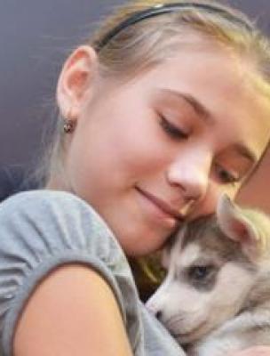 В вояж по Сургутскому району можно будет отправиться на собачьих ... | 400x304