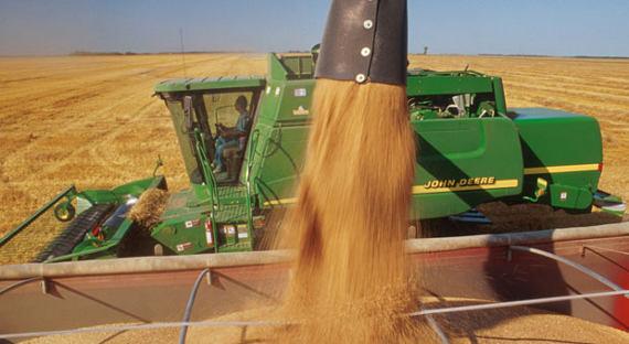 Российская Федерация вданном сезоне может восстановить экспорт пшеницы вИран