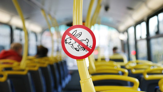 Контролерам могут разрешить ловить «зайцев» попаспорту