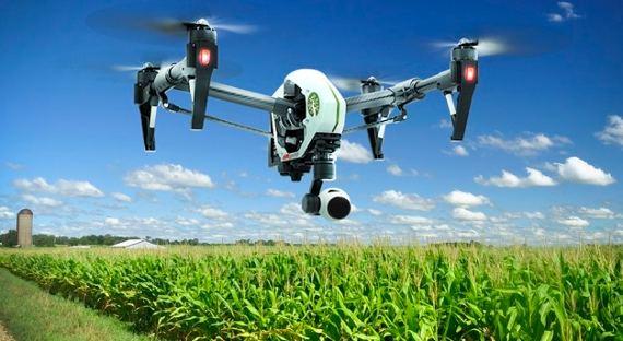 В русском сельском хозяйстве будут работать роботы