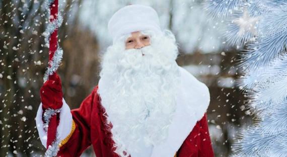 Опрос показал, что взрослые жители России попросилибы уДеда Мороза
