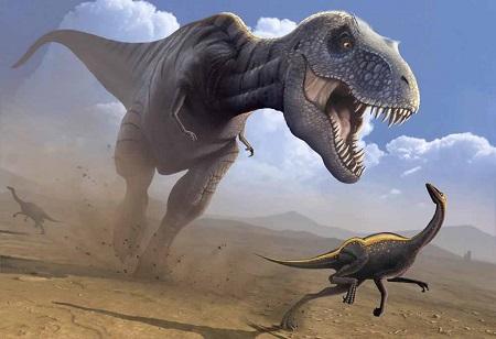 Учёные поведали, как поразмеру животного вычислить его скорость