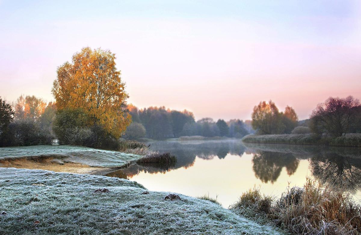 природа в конце ноября фото хотите изобразить