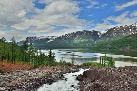 Самая северная пасека вмире появится вКрасноярском крае