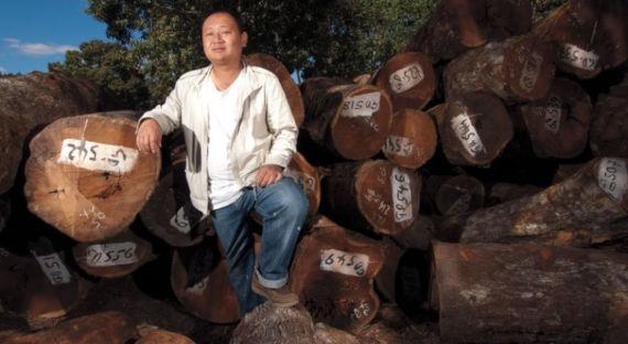 МинприродыРФ: Российская Федерация и КНР совместно займутся восстановлением лесов