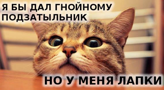 «Невежливо, чувак»— pr-служба челябинского губернатора ответила Гнойному на объявление о«столице СПИДа»