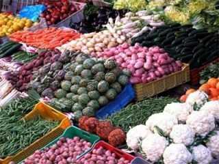 Продажа сельхозпродукции в испании