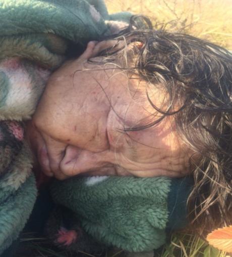 ВХакасии случайные прохожие отыскали расчлененное тело женщины